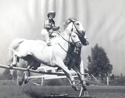 3 Horses Jump