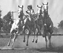 4 Horse Jump